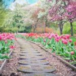 Ładny oraz ładny ogród to zasługa wielu godzin spędzonych  w jego zaciszu w toku pielegnacji.